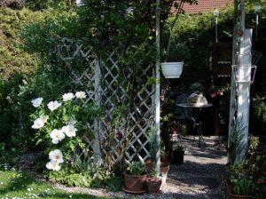 Vorstellung der Bereiche des Gartens