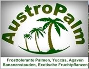 AustroPalm