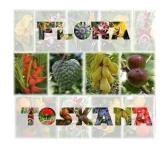logo-flora-toskana